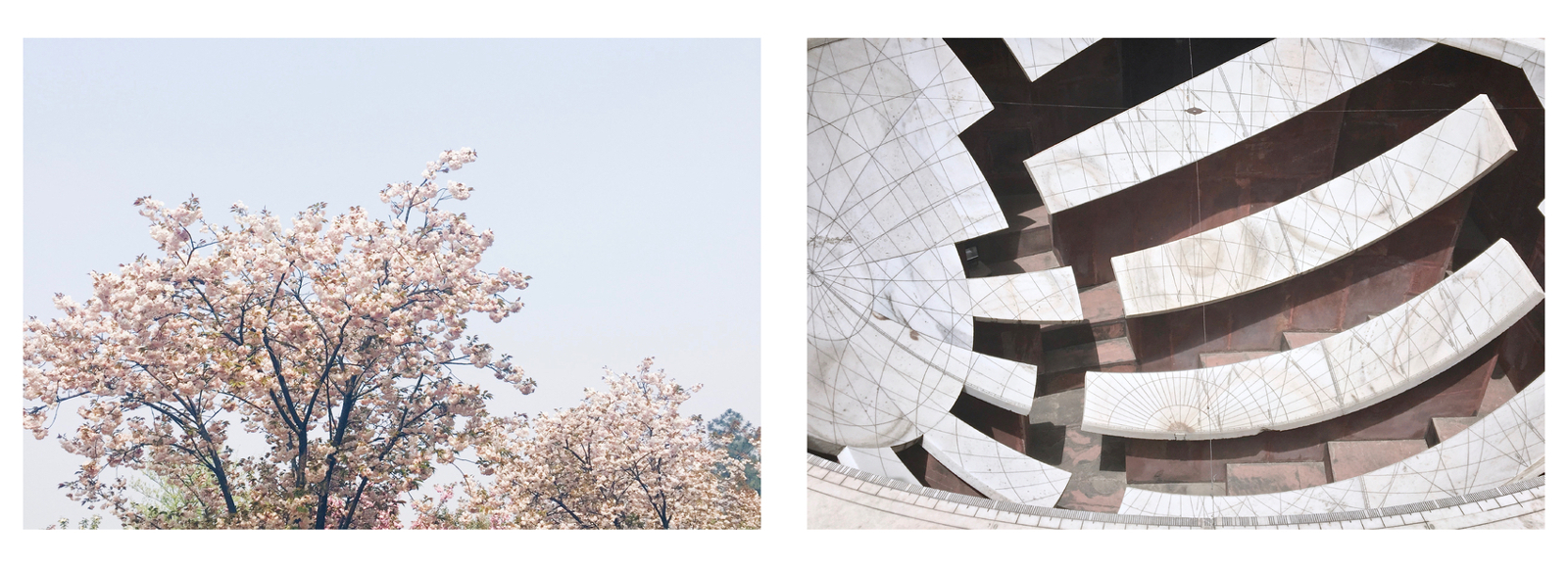 Sakura blosooms in Changsha and a sophisicated ancient clock in Jaipur